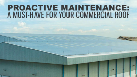 Proactive Roof Maintenance